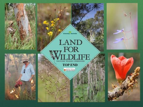Land for wildlife collage