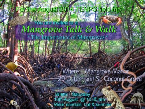 TENPS Mangrove walk 16 Aug 2014 v2