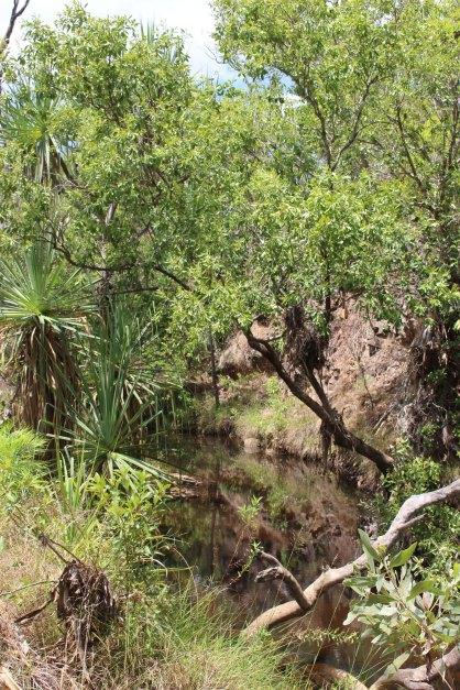 Wrigley Creek