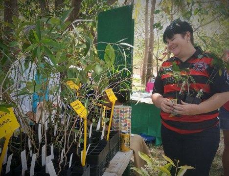 Greening plants