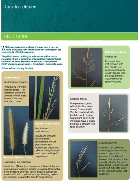 Grass I D chart page one