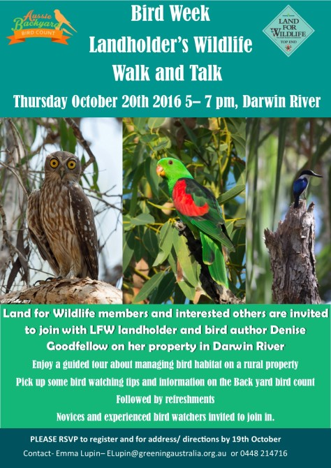 bird-week-walk-and-talk-2016