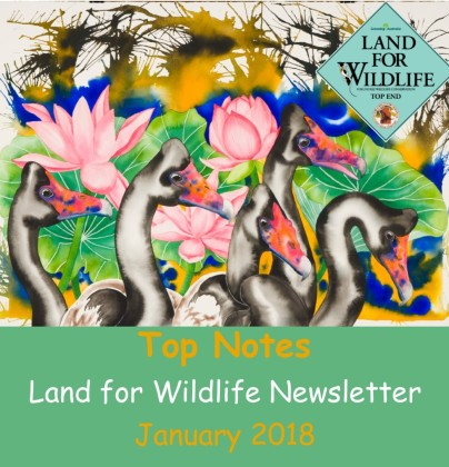Jan18Newsletter cover